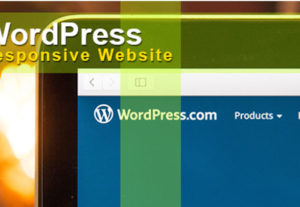Create a responsive wordpress website or landing page with elementor pro